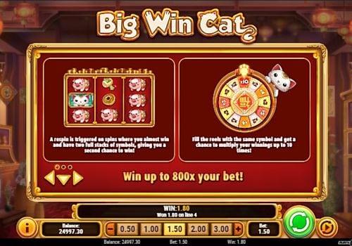 Правила игровых бонусов в онлайн слоте Big Win Cat